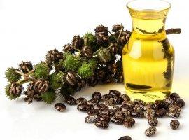 Касторовое масло оптом от производителя