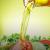 Пищевые  масла